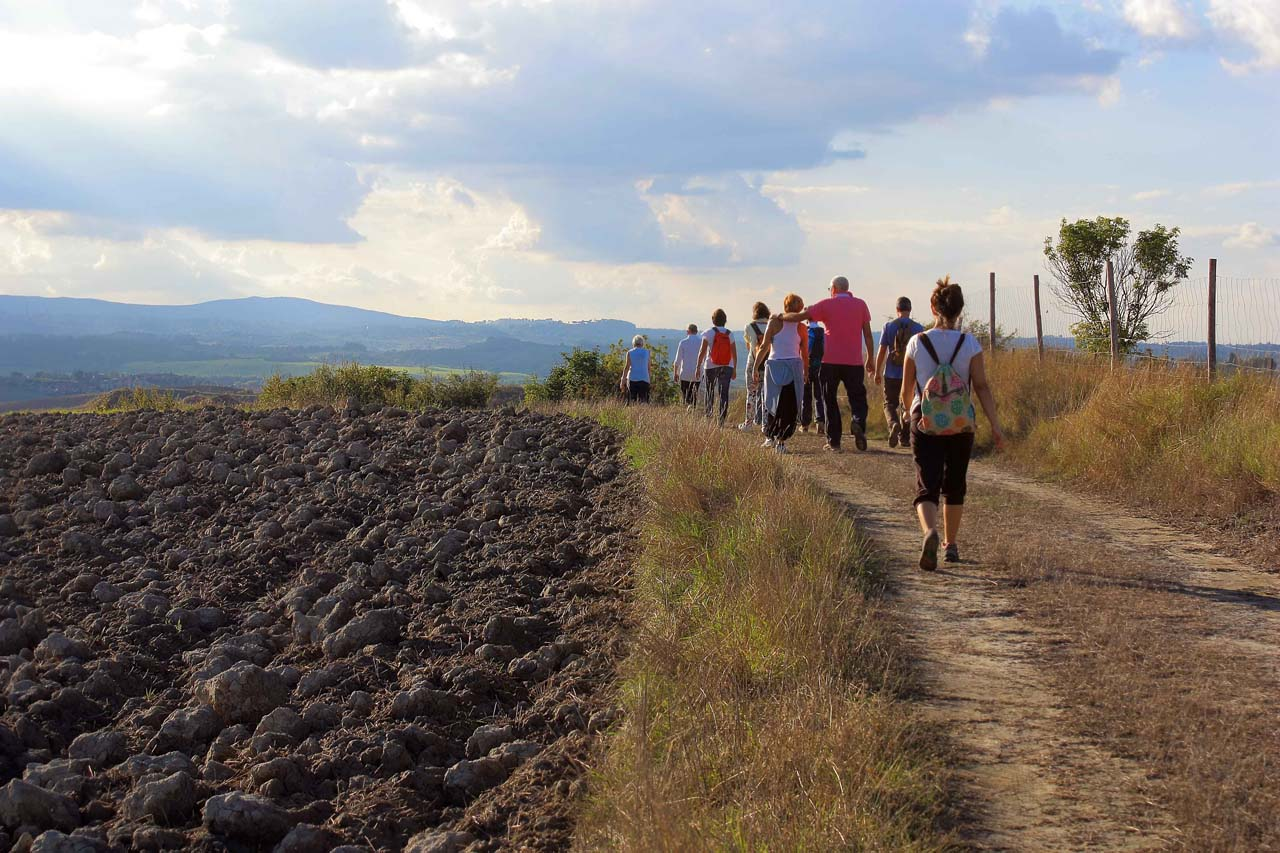 Tuor Toscana Siena Guida Ambientale